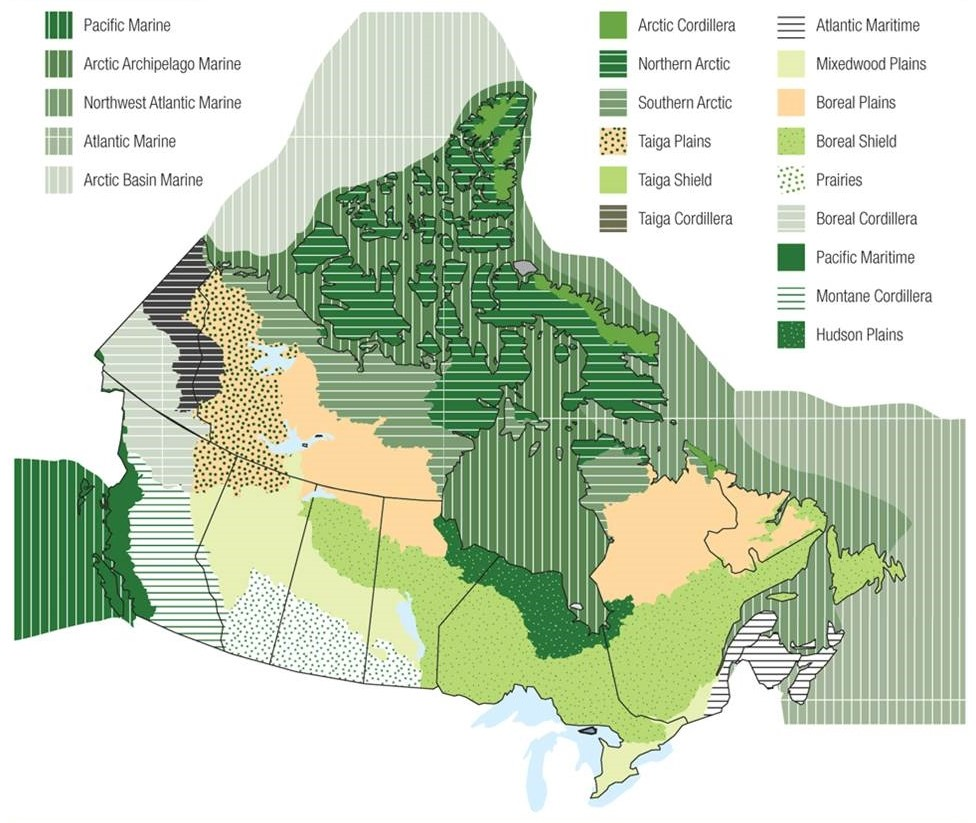 Map Of Canada Ecozones.Chapter 8 Biomes And Ecozones Environmental Science